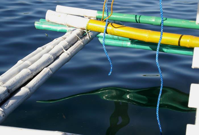 visserij, vissersboot, drijver, Narra, palawan, Filipijnen