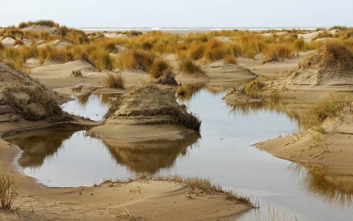 duinen, duinvorming, regenwater, plassen, De Hors, Texel, waddengebied