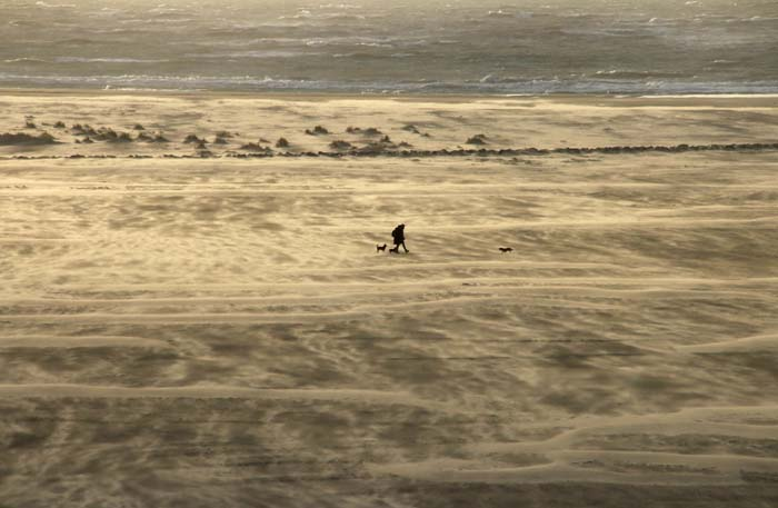 Texel zand strand stuiven wandelaars