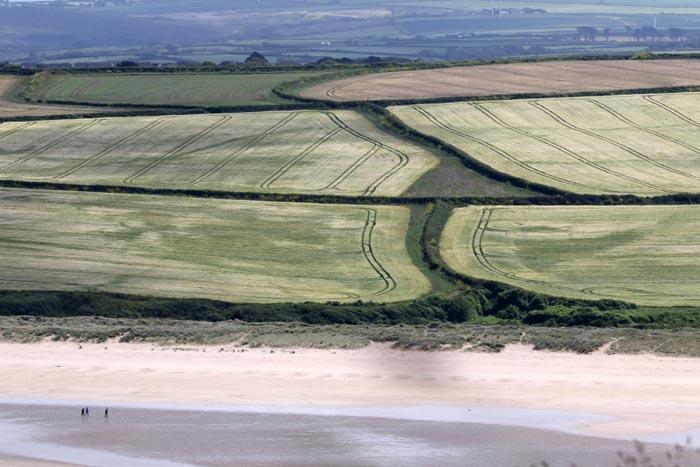 Graanakkers, landschap, Padstow, kust, strand, Cornwall