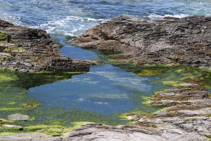 Getijdepoel, rotsen, kust, wieren, Camelrivier, Cornwall