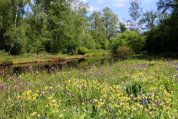 Amstelveen park heempark Thijssepark